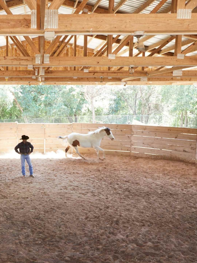 two people inside stable with a horse