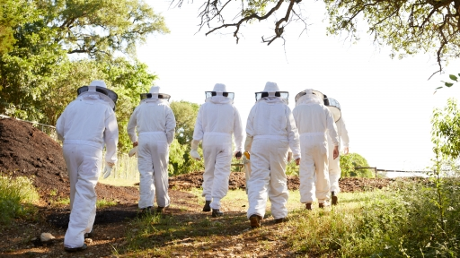 beekeepers walking at miraval austin resort