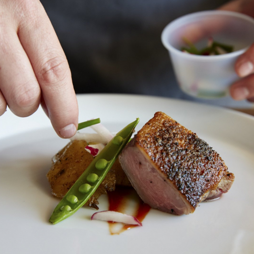 artistically plated prepared meat