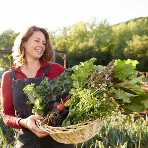 woman picking vegetables in austin texas